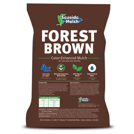 forest_brown_bag_lowres
