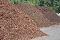 Leader among mulch suppliers in South Carolina