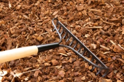 Tips for Proper Mulching